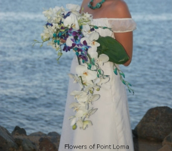 Kadie in San Diego CA, Flowers Of Point Loma