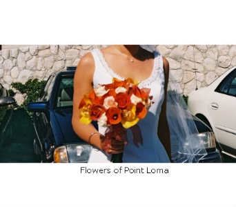Amy in San Diego CA, Flowers Of Point Loma