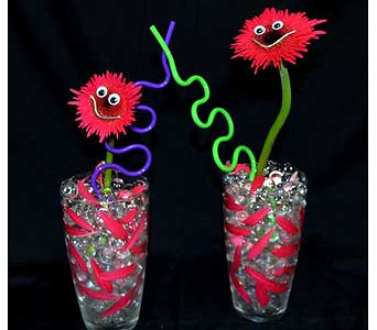 Crazy Straw Smiles in Albuquerque NM, Silver Springs Floral & Gift