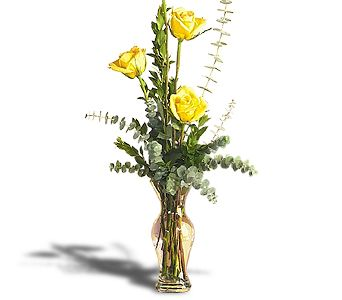 Roses of Appreciation in Bakersfield CA, White Oaks Florist