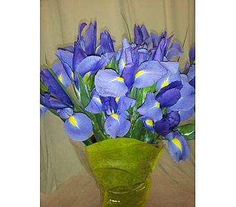 Iris Bouquet in New Paltz NY, The Colonial Flower Shop