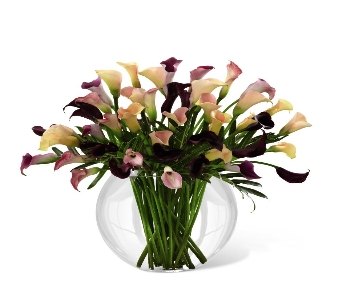 Flawless Luxury Calla Lily Bouquet in Ogden UT, Lund Floral