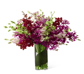Luminous Luxury Orchid Bouquet in Ogden UT, Lund Floral