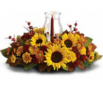 Sunflower Globe in Cocoa FL, A Basket Of Love Florist