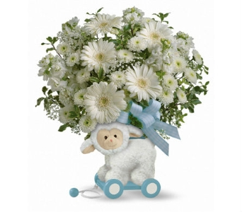Cute Little Lamb Baby Boy in Santa Monica CA, Edelweiss Flower Boutique