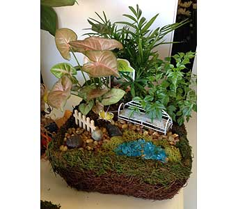 Fairy Garden in Hartford CT, House of Flora Flower Market, LLC