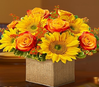 Modern Enchantment� for Fall in Round Rock TX, Heart & Home Flowers