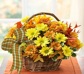 Fall Daisy Basket in Round Rock TX, Heart & Home Flowers