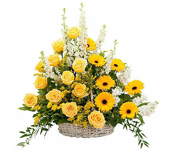 Ray of Sunshine Basket Tribute in Weymouth MA, Bra Wey Florist