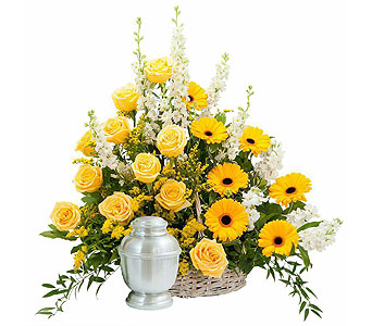 Rays of Sunshine Basket Surround in Amherst NY, The Trillium's Courtyard Florist