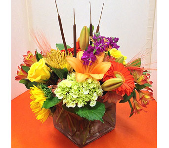 T & C Fall Cube with Cattails and Wheat in Manhasset NY, Town & Country Flowers