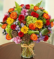 Garden of Grandeur for Fall in Jupiter FL, Anna Flowers
