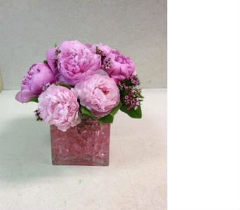 Pink Peonies in Bayside NY, Bell Bay Florist