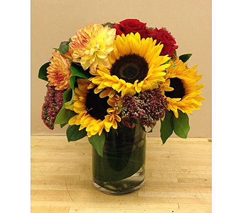 Vase Arrangement Designer's Choice - Modern Fall in Toronto ON, The Flower Nook