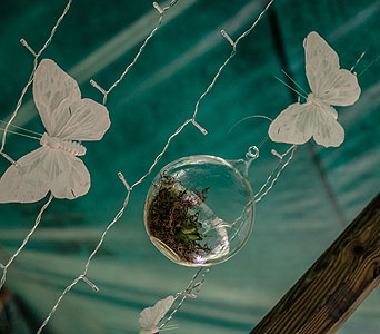 Glass Globe in Loudonville OH, Four Seasons Flowers & Gifts