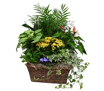 Bountiful Basket in Dearborn Heights MI, English Gardens Florist