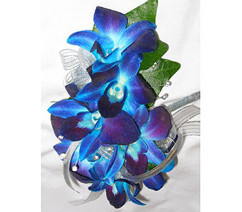BGHF Blue Bomb Corsage in Hales Corners WI, Barb's Green House Florist