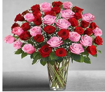 Silver spring florists flowers in silver spring md colesville utimate elegance long stem pink red roses bqt in silver spring md colesville floral mightylinksfo