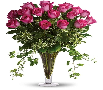 Dreaming in Pink 18 Red Roses  in Silver Spring MD, Colesville Floral Design
