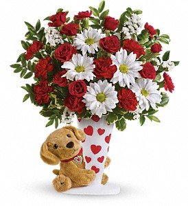 Send a Hug I Ruff You by Teleflora in The Woodlands TX, Rainforest Flowers