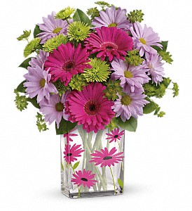 Teleflora's Thanks A Daisy Bouquet in Hendersonville NC, Forget-Me-Not Florist