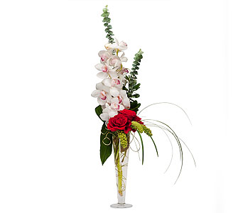 Sheer Splendor in Brockton MA, Holmes-McDuffy Florists, Inc 508-586-2000