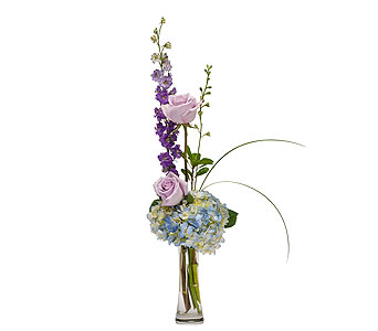 Speak Softly in Raleigh NC, North Raleigh Florist