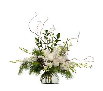 Frosted in Vinton VA, Creative Occasions Florals & Fine Gifts