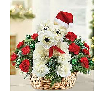 Santa Paws Bouquet in Guelph ON, Patti's Flower Boutique