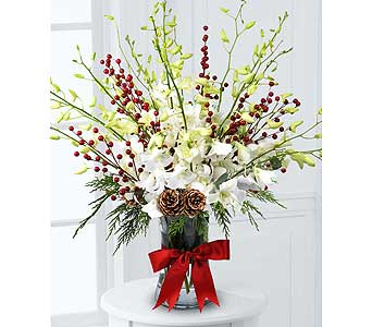 Orchids and Berries by Hoogasian Flowers in San Francisco CA, Hoogasian Flowers