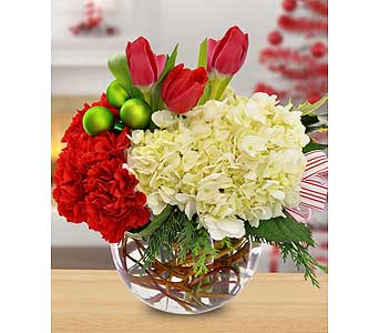 Holiday Floral Bowl by Hoogasian Flowers in San Francisco CA, Hoogasian Flowers