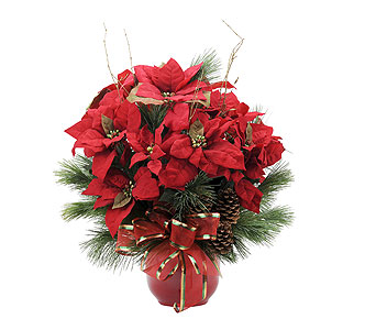 Grand Poinsettia in Amherst NY, The Trillium's Courtyard Florist