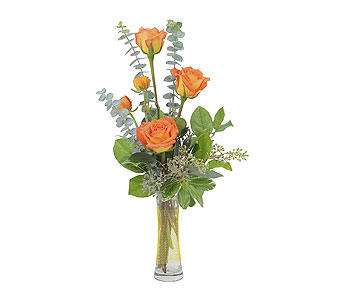 Orange Simplicity in Branford CT, Myers Flower Shop