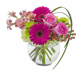 Patience in Spartanburg SC, A-Arrangement Florist