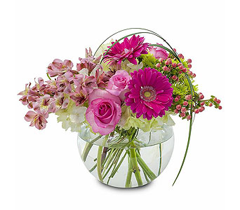 Grace in Spartanburg SC, A-Arrangement Florist