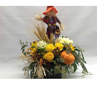 Fall in Quincy MA, Fabiano Florist