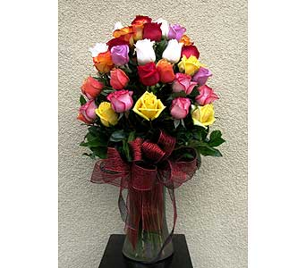 50 multi-color roses in San Diego CA, The Floral Gallery