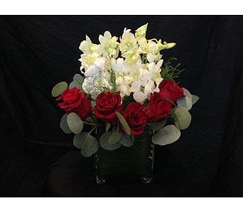 Red Bed of White Orchids in Dallas TX, Z's Florist