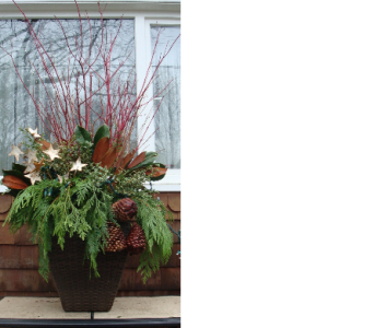 Outdoor Christmas Urn in Guelph ON, Patti's Flower Boutique