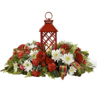 Celebrate the Season Centerpiece by FTD in Cleveland OH, Orban's Fruit & Flowers