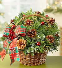 Holiday Evergreen Basket in Chelsea MI, Chelsea Village Flowers