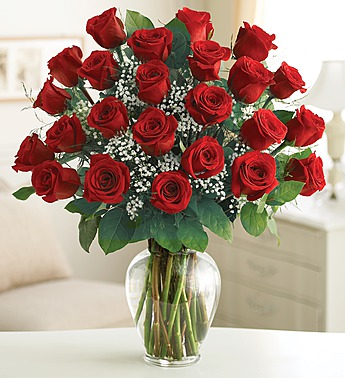 2 dozen  roses in Princeton NJ, Perna's Plant and Flower Shop, Inc