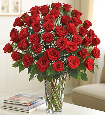 4 dozen roses in Princeton NJ, Perna's Plant and Flower Shop, Inc