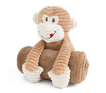 Plush Monkey with Rolled Blanket in Detroit and St. Clair Shores MI, Conner Park Florist