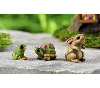 Miniature Garden Rabbit, Frog & Tortoise in Guelph ON, Patti's Flower Boutique