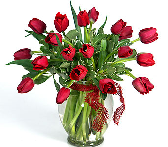 Kiss My Tulips in Little Rock AR, Tipton & Hurst, Inc.