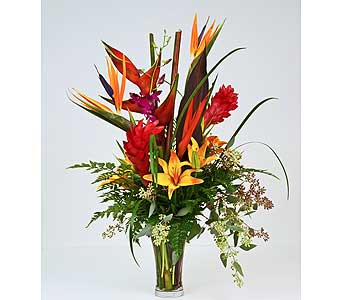 Island Passion in Indianapolis IN, Gillespie Florists