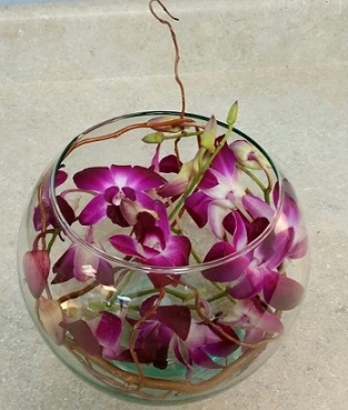 Exotic Breeze Orchid Bouquet in Vienna VA, Vienna Florist & Gifts