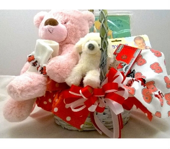 NC State Baby Basket in Raleigh NC, North Raleigh Florist