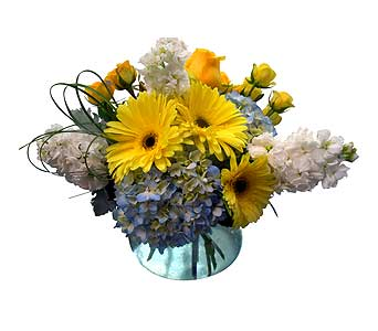 Morning Sun in Detroit and St. Clair Shores MI, Conner Park Florist